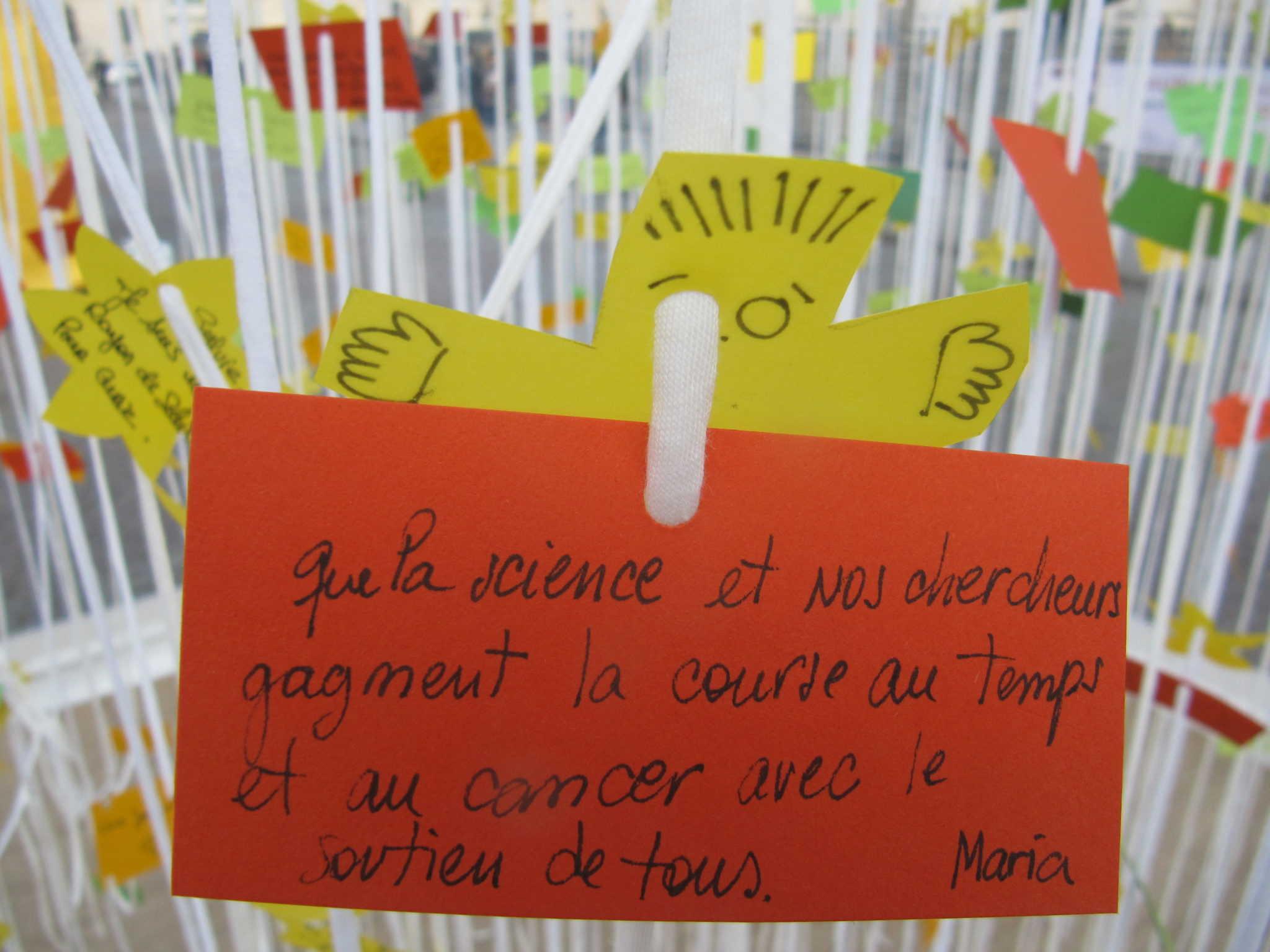 La Forêt des messages #1 / The foret messages 1